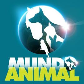 Cl�nica Veterin�ria - Mundo Animal